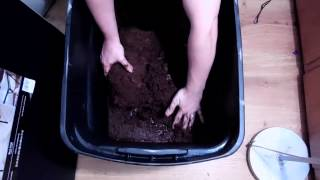 How to prepare coco coir for growing