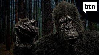 Bigfoot - Behind the News