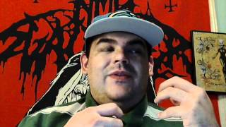 """My Review Of Shadows Fall """"Fire From The Sky"""""""
