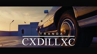Смотреть клип Tranda - Cxdillxc