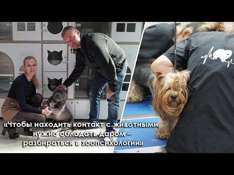 Грумеры — о психологии домашних животных и работе зоогостиницы в Могилеве