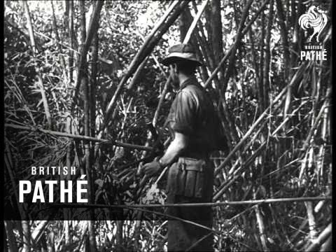 Malayan Emergency (1950-1959)