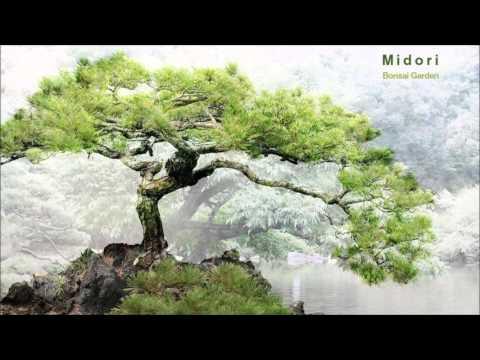 Midori - Bonsai Garden (Full Album)