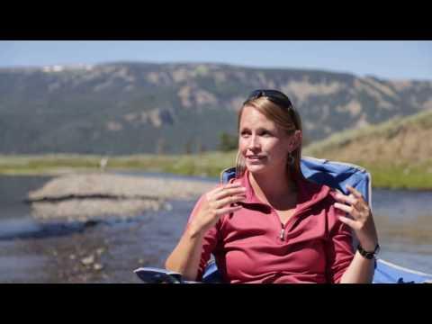 Wildlife & Nature in Yellowstone National Park