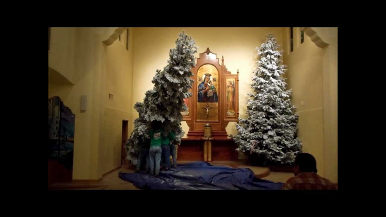 delivering and setting up two 22 foot tall christmas trees - 20 Ft Christmas Tree