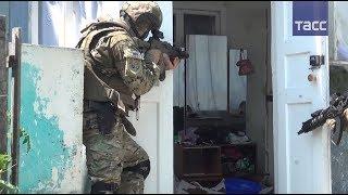 В НАК подтвердили ликвидацию главаря преступной банды в Дагестане