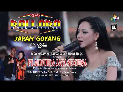 Download Lagu lala widi jaran goyang - new pallapa gemblung mp3