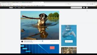 Flickr - How To Change Password Of Your Account
