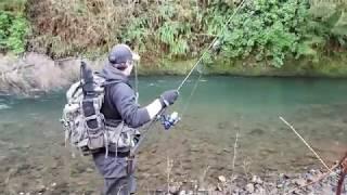 Steelhead Fishing/Light tackle and big fish.