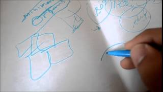 كيف تبدأ التفكير فى مشروعك المعماري ؟ 2 : الفكرة التصميمية (الكونسبت)