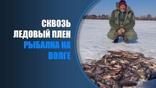 Рыбалка на Волге, Астрахань. Сом с дуру(Двухдневная рыбалка на Волге с приключениями. Первый день был не очень удачным, зато повеселились от души..., 2016-03-31T05:53:03.000Z)