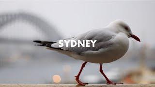 Sydney Through a Nifty Fifty