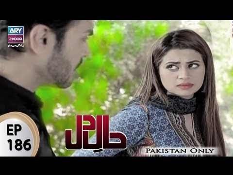 Haal-e-Dil - Ep 186 - ARY Zindagi Drama