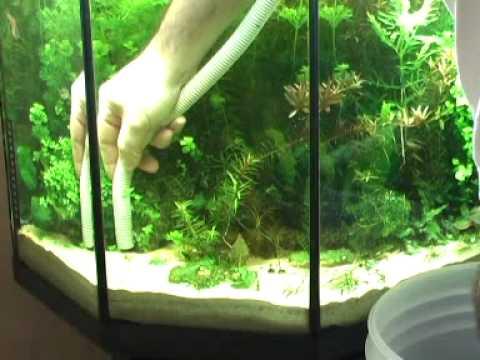 Acquario sistema sabbia cambio youtube for Fondo per acquario