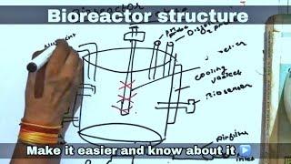 Bioreactor structure ll biology ll