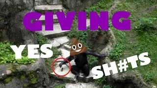ANIMALS THROWING SH*T at HUMANS (literally) // FUNNY animal FAIL Compilation