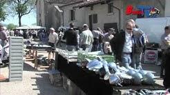 Bourse d'échange Mécaniques anciennes Drom 2011 (Ain)