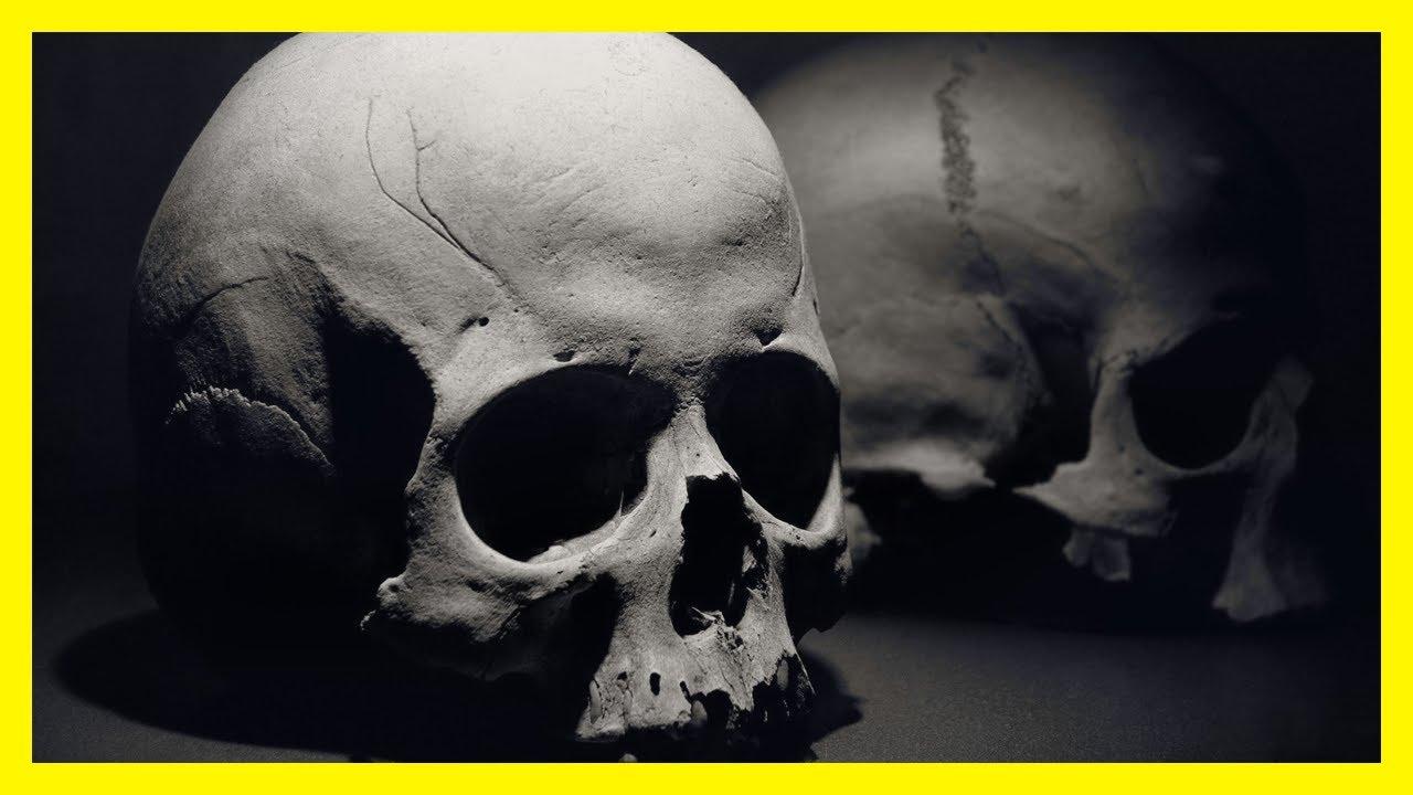 Soñar Con Calaveras Significado De Soñar Con Esqueletos
