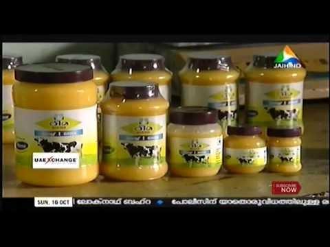 Money Watch : ESAF & Rhema Dairy Products Ltd │Jaihind @16th Oct 2016 | Biwin Peter