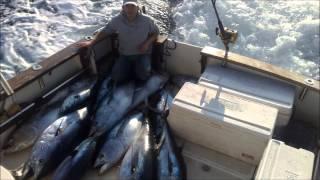 Big Game Fishing ''Artena'' Croatia Angeln in Kroatien Рыбалка в Хорватии