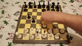 Принятый ферзевый гамбит! Ловушка, которую должен знать каждый!Шахматы.