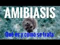 AMIBIASIS: Qué es y cómo se trata