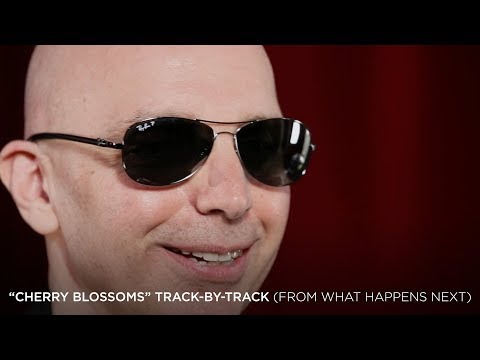 "Joe Satriani - ""Cherry Blossoms"" (#4 What Happens Next Track-By-Track)"