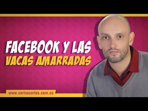 Facebook y las vacas amarradas