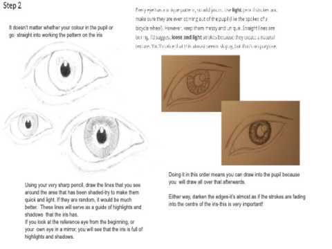 Learn To Draw An EYE - ART COURSE FREE ONLINE