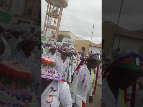 Marujada Curaçá Bahia 2019(2)