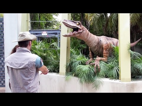 Jurrasic Park Raptor Encounter at Universal Studios Islands of Adventure - We Meet Lucy!