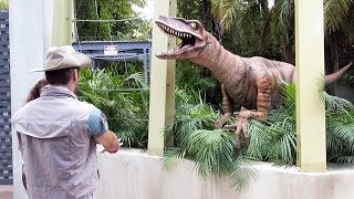 Jurrasic Park Raptor Encounter at Universal Studios Islands of Adventure - We Meet Lucy!