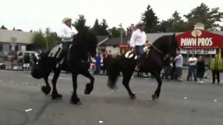 White Center Jubilee Days parade: High-stepping horses