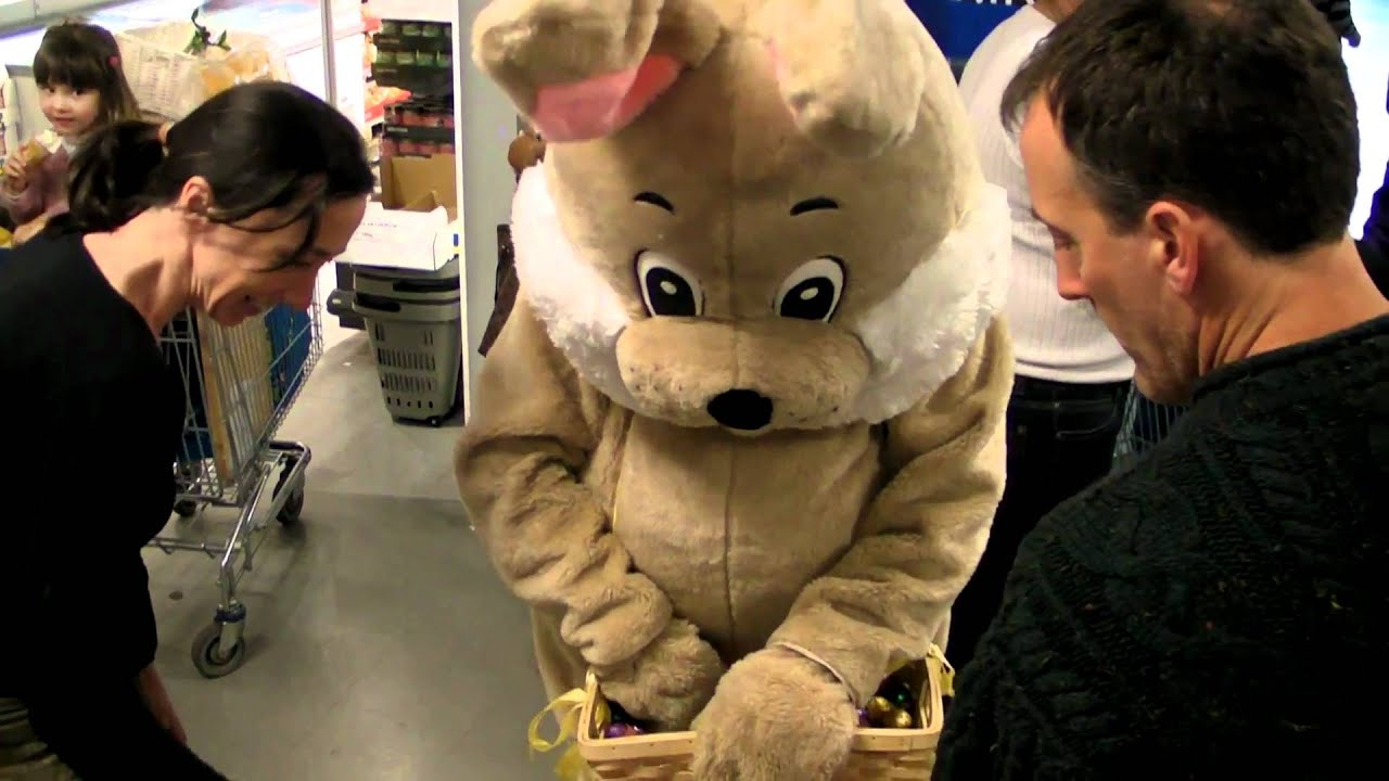 notre mascotte carotti le lapin en pleine distribution de chocolats youtube. Black Bedroom Furniture Sets. Home Design Ideas