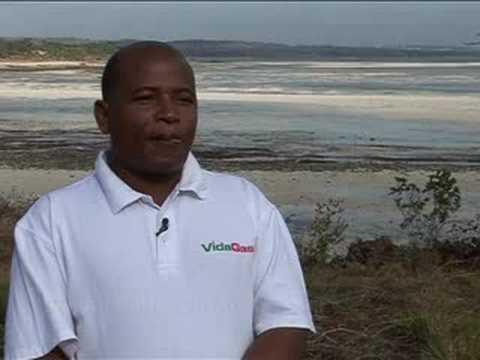 Vidagas-Mozambique