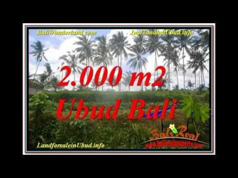 Affordable 2,000 m2 LAND SALE IN Ubud Pejeng BALI TJUB625