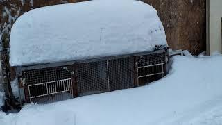 ох снег снежок.русская метелица