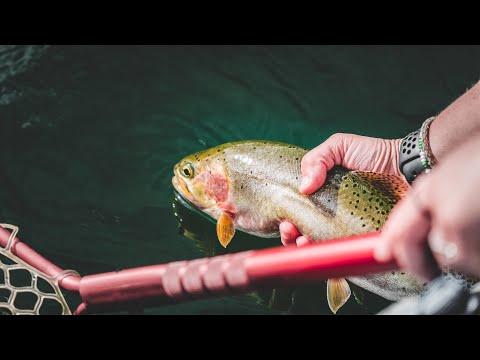 FLY FISHING ROCK CREEK MONTANA | BEAUTIFUL SCENERY