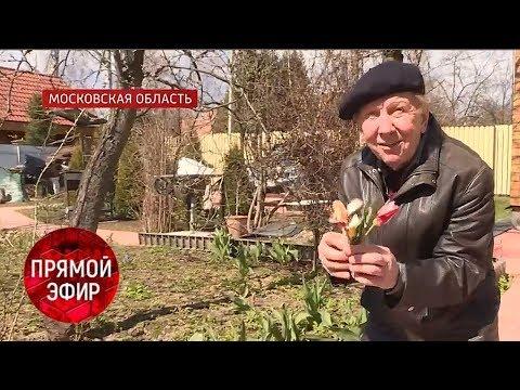COVID-19: «Доживём до понедельника!». Андрей Малахов. Прямой эфир от 24.04.20