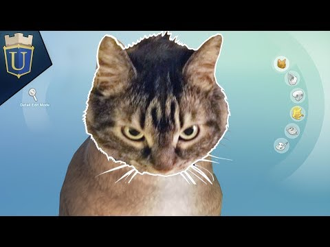 Sims 4 | Making NatCat #CATCAM Soon