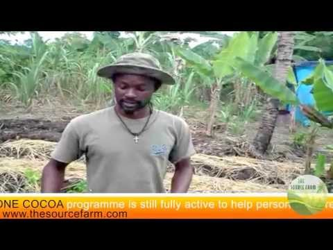 one one cocoa programme