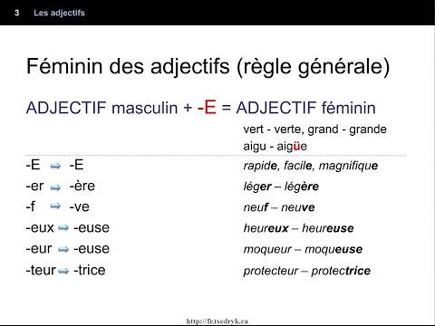 Les adjectifs – introduction  - genre (féminin/masculin) – nombre (pluriel/singulier)