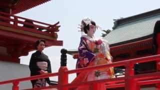 yamaguchi-ken shimonoseki-city JAPAN 山口県下関市の赤間神宮で行われ...