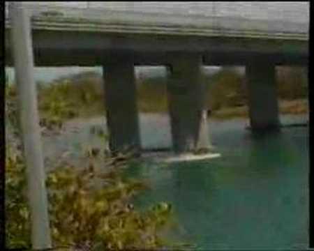 Currumbin Creek Highway Bridge
