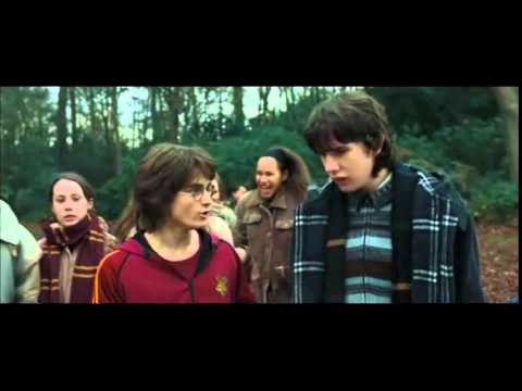 Harry potter 4 et la coupe de feu streaming - Streaming harry potter et la coupe de feu ...