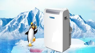 Blue Star 1 Ton Portable AC | Best Blue Star Portable AC in India 2019