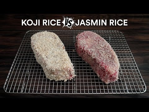 Sous Vide KOJI RICE vs JASMINE RICE Steak Experiment!