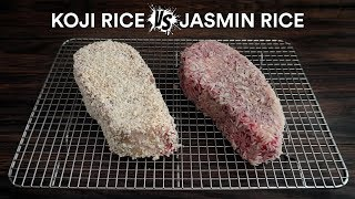 Sous Vide KOJI RICE vs JASMINE RICE Steak Experiment!