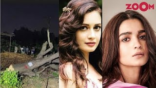 Bollywood celebrities express their anger over felling of trees in Aarey Colony   Bollywood News