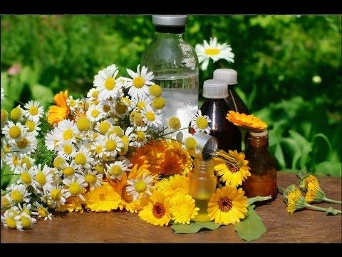 Разжижающие мокроту и отхаркивающие средства